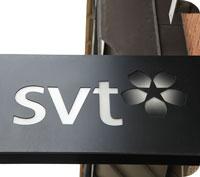 TV-licensen skrotas och ersätts av en individuell public service-skatt.