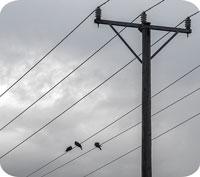 April gav högsta elpriset på sju år