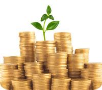10 000 kronor när du föds blir 1,5 miljoner kronor till pensionen. Börja spara på börsen. Nu!