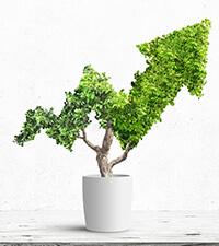 Fortfarande läge att köpa senaste årets bästa fonder