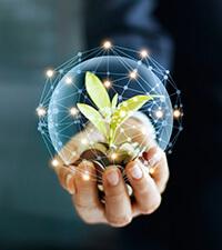 Är gröna företag nästa bubbla?